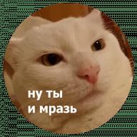 Стикеры Кусь для Телеграм