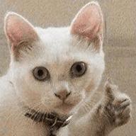 Стикеры Сломанные коты для Телеграм